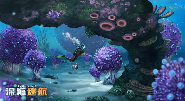 图片: 图2+满足所有想象的海底世界.jpg